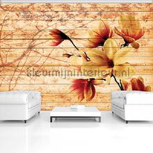 Flowers with wooden background fotobehang Kleurmijninterieur Bloemen---Planten