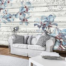 Blue orchiids on wood fotobehang Kleurmijninterieur Bloemen Planten