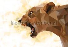 Roaring lioness fotobehang Kleurmijninterieur Dieren