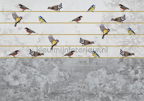 Birds in beautiful grey landscape fotobehang 12062ve-l Kunst - Ambiance Kleurmijninterieur