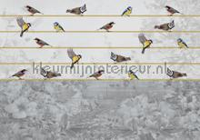 Birds in beautiful grey landscape fotobehang Kleurmijninterieur dieren
