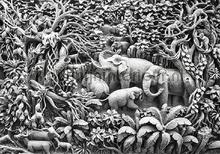 Elephant jungle fototapet Kleurmijninterieur All-images