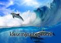 Dolphins temaer