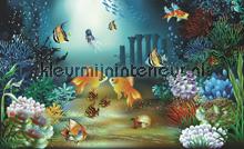 Ocean fotobehang Kleurmijninterieur Zon Zee Strand