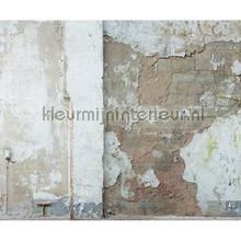 Oude gebladerde muur fotobehang Architects Paper AP Digital 2 470435-200-grams