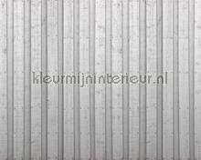 Wooden wall photomural Architects Paper AP Digital 4 dd108620