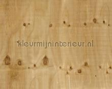 Plywood photomural Architects Paper AP Digital 4 dd108640