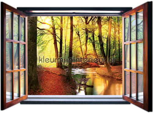 Kleur Mijn Interieur : Autumn forest fotobehang bijzonder fotobehang kleurmijninterieur