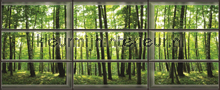 View through window on forest fotobehang Kleurmijninterieur Bossen