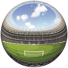 Stadion Fish Eye photomural all-images
