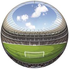 Stadion Fish Eye fotobehang Sport