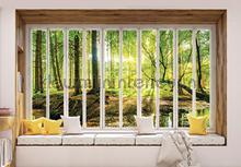 Sunny forest seen though window photomural Kleurmijninterieur all-images