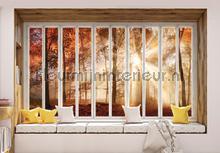 Autumn forest seen through window fotobehang Kleurmijninterieur Bossen