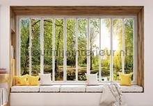 Green forest seen though window fotobehang Kleurmijninterieur Bossen