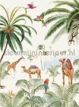 Binti Baby carta da parati Creative Lab Amsterdam Botanical Collection binti-baby-200
