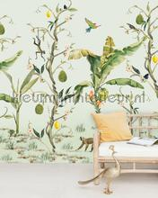 Monkey Life fotomurales Creative Lab Amsterdam PiP studio wallpaper