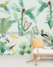 Pelican fotobehang Creative Lab Amsterdam York Wallcoverings