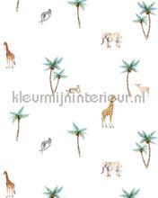 Savannah palmtree fototapeten Creative Lab Amsterdam weltkarten