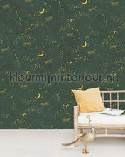 Stargazer fotobehang Creative Lab Amsterdam York Wallcoverings