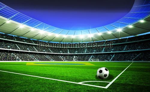 Football stadium fotobehang 1914-VE M Sport Kleurmijninterieur