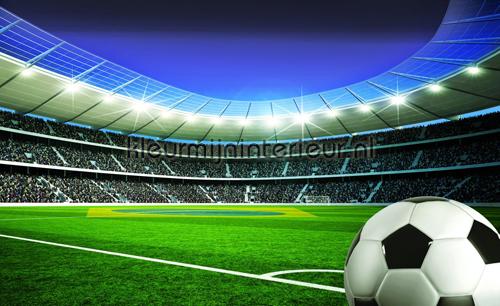 Football stadium II fotobehang 1915-VE M Sport Kleurmijninterieur