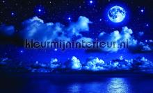 Moony night fotobehang Kleurmijninterieur Kinderkamer-jongens