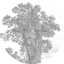 Engraved tree fotobehang Kek Amsterdam Kunst Ambiance