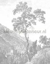 engraved tree fotobehang Kek Amsterdam Circles and Panels pa-002