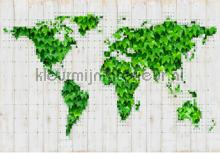 Green world photomural Kleurmijninterieur world maps