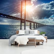 Sun break through over the bridge fotomurali Kleurmijninterieur Tutti-immagini