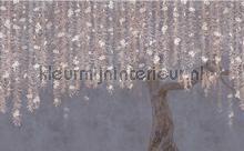 cora fotomurali Coordonne Core 6600088