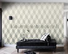 Fading cube photomural BN Wallcoverings all images