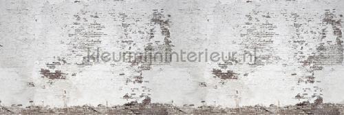 Industrial Ivory fototapet r14321 Curious Rebel Walls