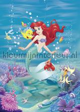 ariel singing fotobehang Komar Disney Edition 3 4-4020
