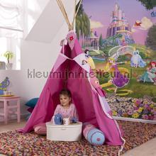 disney princess sunset photomural 4-4026 Disney Edition 3 Komar