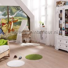 winnie expedition fotobehang 4-411 Disney Edition 3 Komar
