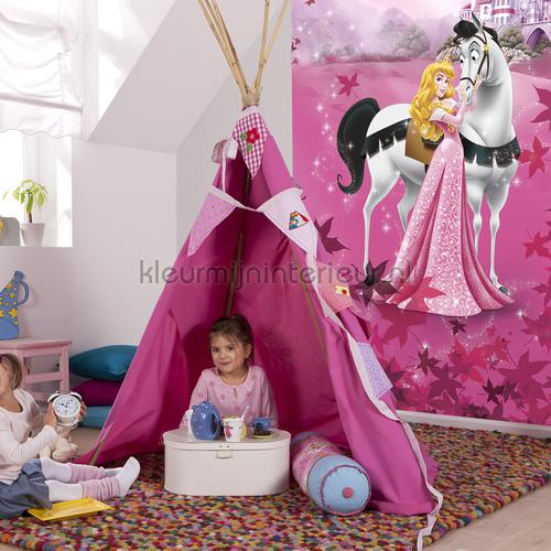 sleeping beauty photomural 4-495 Disney Edition 3 Komar