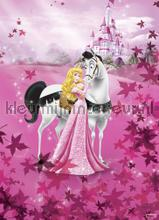 sleeping beauty fotobehang Komar Disney Edition 3 4-495