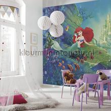ariels castle photomural 8-4021 Disney Edition 3 Komar