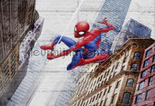 spider man new concrete fotobehang Komar Disney Edition 3 8-4029