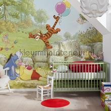 Winnie pooh ballooning fotomurais Komar selva