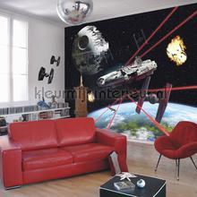 star wars millenium falcon photomural 8-489 Disney Edition 3 Komar