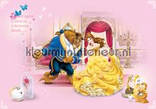 Beauty and the beast fotobehang Kleurmijninterieur Disney---Pixar