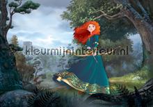 Brave fotobehang Kleurmijninterieur Disney---Pixar