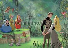 Cinderella fotobehang Kleurmijninterieur Disney---Pixar