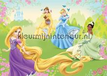 Princess on the meadow fotobehang Kleurmijninterieur Disney---Pixar