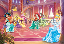 Princess pets in the castle fotobehang Kleurmijninterieur Disney---Pixar