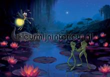The princess and the frog fotobehang Kleurmijninterieur Disney---Pixar