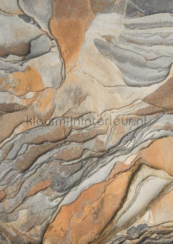 geologia fotomurales encc84593447 Moderno - Abstracto Casadeco