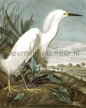 Snowy heron photomural Kek Amsterdam world maps